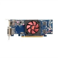 Dell Dell 1 GB Radeon HD 7470 Low Profile Graphics Card for Dell OptiPlex 3010/ 7010 Desktops
