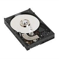 500 GB SATA 7.200 omdr./min. 9cm (3.5'') HD Hot Plug Færdigmonteret