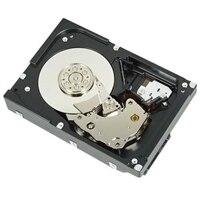 Dell Serial ATA-harddisk med 3.5in 7200 omdr./min. - 3 TB