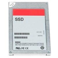 """Dell 3.84 TB Solid State-drev Serial Attached SCSI (SAS) Blandet Brug MLC 12Gbps 2.5 """" Hot-plug-drev - PX05SV , kundesæt"""