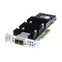 Dell PERC H830 RAID adapter til ekstern JBOD med 2 GB NV low profile