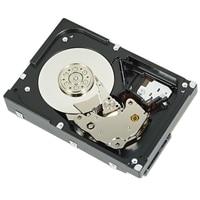 Dell - Festplatte - 6 TB - intern - 8.9 cm (3.5-Zoll) - SAS 6Gb/s - NL - 7200 rpm