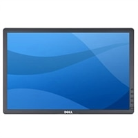 Dell - Professional P1913 PLHD 19-inch Widescreen Monitor (Panel Head Only without Stand)