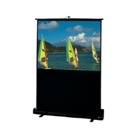 Draper 100 Inch NTSC Traveller Portable Screen
