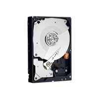 250GB 3.5inch 7200 RPM SATA RE4 64MB Internal Hard Drive