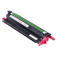 Dell 3,000-Page Magenta Toner Cartridge for Dell C3760N/ C3760DN/ C3765DNF Color Laser Printer