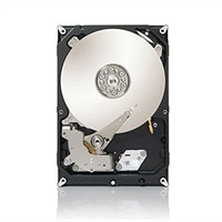 Seagate Barracuda 1 TB Serial ATA 3.5-inch Internal Hard Drive (ST310005N1A1AS-RK)