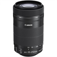 Canon EF-S - Telephoto zoom lens - 55 mm - 250 mm - f/4.0-5.6 IS STM - Canon EF-S