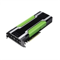 Dell NVIDIA Tesla M60 Graphic Card - 16 GB