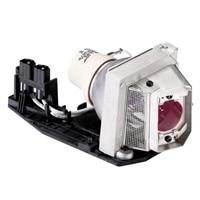 Kit - Bulb for 1510X