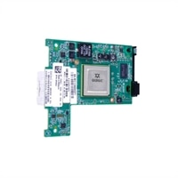 QLogic QME8262-k - Network adapter - 10Gb Ethernet x 2 - for PowerEdge M420, M520, M610, M620, M710HD, M820, M910, M915