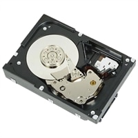 Dell 7200  RPM Near Line SAS 6Gbps  Hard Drive– 1 TB