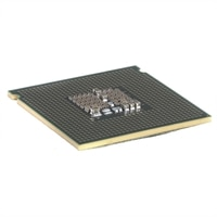 Quad Core Xeon L5310 LV (1.6GHz, 2x4MB, 1066MHz FSB) Processor - Kit