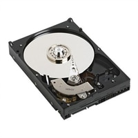 Dell 1TB SATA 7.2k 9cm (3.5) HD Hot Plug Fully Assembled, C6100/C6105