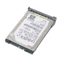 Dell Hard Drive : 256GB Solid State Hard Drive
