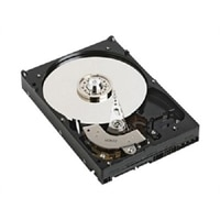 Dell 5400 RPM Serial ATA Hard Drive - 750 GB