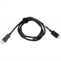 Adapter : DisplayPort Cable for USFF AIO Stand (Kit)
