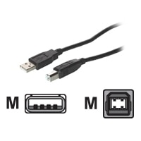 C2G - USB cable - 4 PIN USB Type A (M) - 4 PIN USB Type B (M) - 2 m (USB / Hi-Speed USB) - black