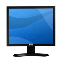 E170S 17-inch Black Flat Panel LCD Monitor