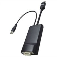 Display Port to Dual Link DVI Adapter