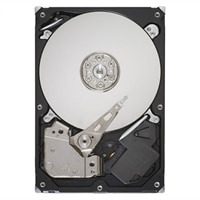 1 TB 7200 RPM Serial ATA Internal Hard Drive for Select Dell Inspiron Desktop/ Precision WorkStation/ Vostro Desktop/ XPS Desktops