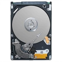 Dell 7200 RPM FIPS OPAL Encrypted SATA Hard Drive - 320 GB for Select Dell Latitude / Vostro Laptops / OptiPlex / Vostro Desktops / Precision Mobile WorkStations