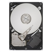 500GB 7.2K RPM SATA Entry 3.5in Cabled Hard Drive PowerEdge T20 Customer Kit