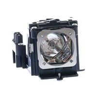 PRM-20 & PRM-10 Lamp