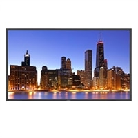 NEC 46-inch LCD TV - P462-AVT 1080p Professional Grade Large Screen TV with AV Inputs and Digital Tuner