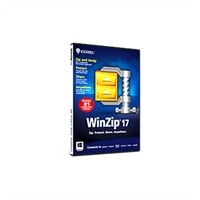 WinZip Standard - ( v. 17 ) - complete package - 1 user - DVD - Win - English - AES