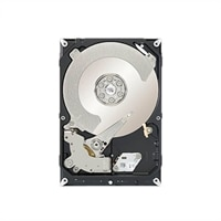 Seagate Desktop SSHD - Hybrid hard drive - 1 TB ( 8 GB Flash ) - internal - 3.5-inch - SATA-600 - buffer: 64 MB
