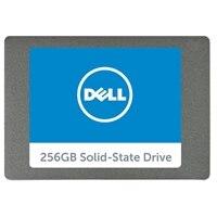 256GB Serial ATA Solid State Hard Drive