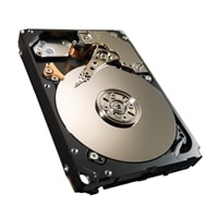 900GB 10000RPM 64MB BUFFER, SAS, 2.5 INC