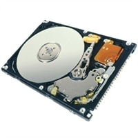 Dell Refurbished: 5400 RPM PATA Hard Drive - 80 GB
