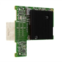 Tarjeta I/O Dell canal de fibra Dell Emulex LPM-16002 para servidores Dell PowerEdge M420/ M620/ M820/ M910/ M915