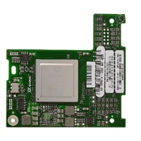 Copper Fibre Channel Qlogic 10Gbit/s iSCSI double port I/O carte - Profil bas