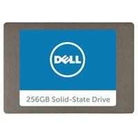 Dell Serial ATA Interna Disco rigido a stato solido - 256GB