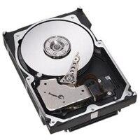 Dell 15,000 RPM SAS Hot Plug ハードドライブ - 600 GB