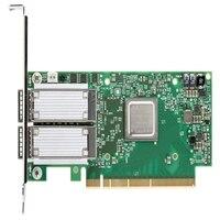 デル Mellanox ConnectX-4 製 デュアルポート 100 GbE, QSFP+, PCIe アダプタ, ロープロファイル, Customer Install