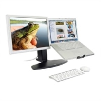 Ergotron Neo-Flex LCD & Laptop Stand、 Black #33-331-085