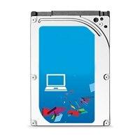 Dell 7200 rpm Seriële ATA-harde schijf - 500 GB