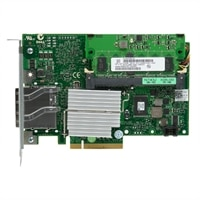 PERC H800 RAID-adapter voor externe JBOD - 1 GB NV-cache - zonder kabels - kit