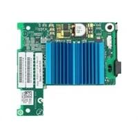 Dell Emulex LPE 1205-M 8Gbps fibra canal I/O Cartão