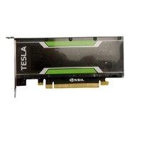 Dell NVIDIA Tesla M4 4GB GPU počítačový procesor