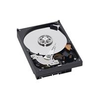 Hårddisk: 500GB Serial ATA (7 200 varv/min) Hårddisk