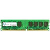 Dell minnesuppgradering - 4 GB - 1Rx8 DDR3 UDIMM 1600 MHz ECC