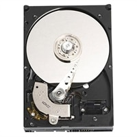 Dell 7200 RPM 序列 ATA3 Entry Cabled硬碟:500GB