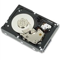 2 TB 7.2K RPM NLSAS 12 Gbps 512n 2.5 吋 纜接式磁碟機, Cus Kit