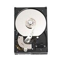 Dell 5400 RPM 序列 ATA3 硬碟:1TB
