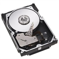 Dell 15,000 RPM SAS Hot Plug Hard Drive - 600 GB